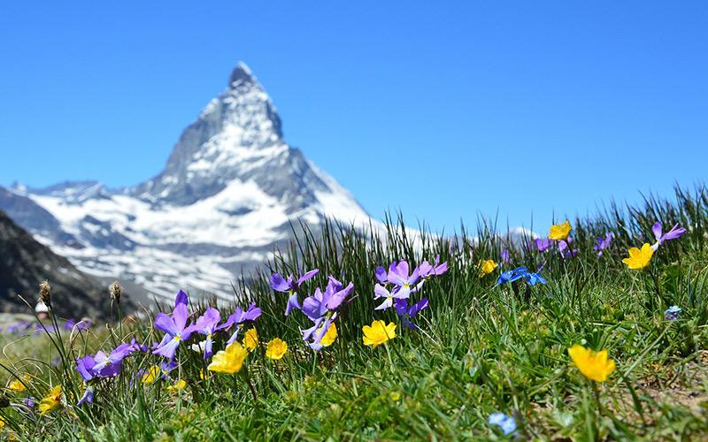 Spring-in-Switzerland