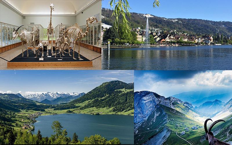 Visit-in-Zug